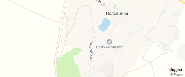 Улица Суворова на карте деревни Половинки с номерами домов