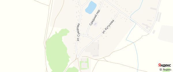 Светлая улица на карте деревни Половинки с номерами домов