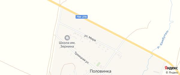 Улица Мира на карте деревни Половинки с номерами домов