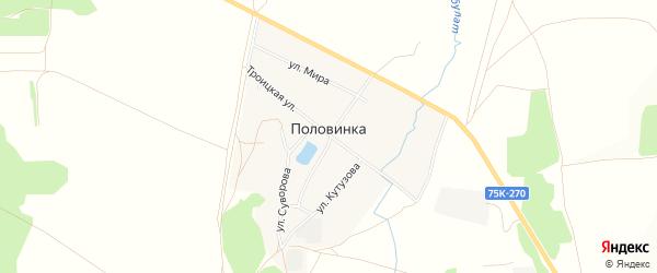 Карта деревни Половинки в Челябинской области с улицами и номерами домов