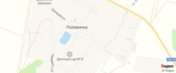 Троицкая улица на карте деревни Половинки с номерами домов