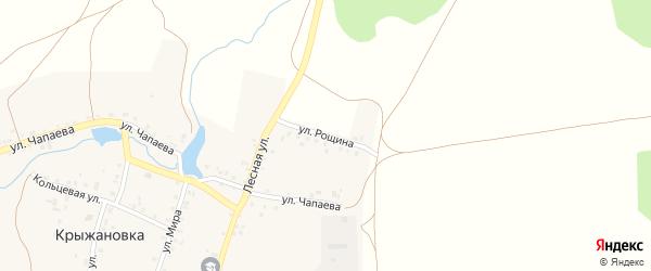 Улица Рощина на карте деревни Крыжановки с номерами домов