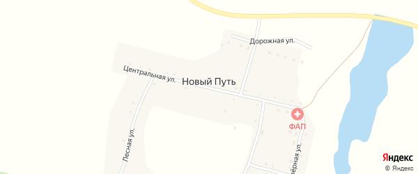 Дорожная улица на карте поселка Нового Пути с номерами домов