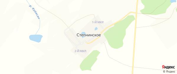 Карта Степнинского села в Челябинской области с улицами и номерами домов