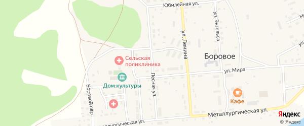 Лесная улица на карте Борового села с номерами домов
