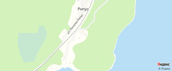 СНТ Рипус на карте Кыштыма с номерами домов