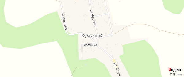 Лесная улица на карте Кумысного поселка с номерами домов