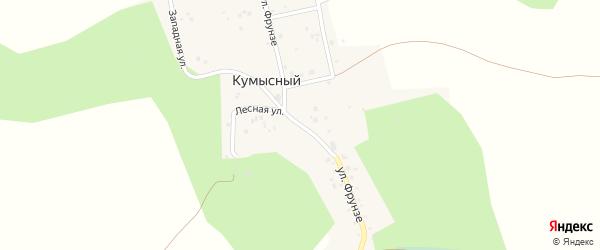 Улица Фрунзе на карте Кумысного поселка с номерами домов