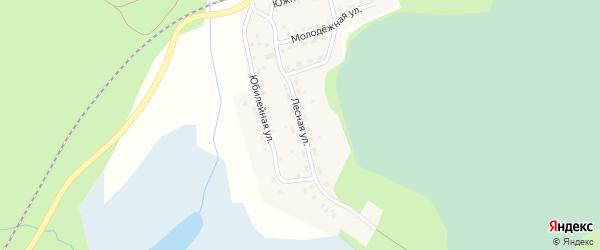 Лесная улица на карте поселка Тайгинки с номерами домов