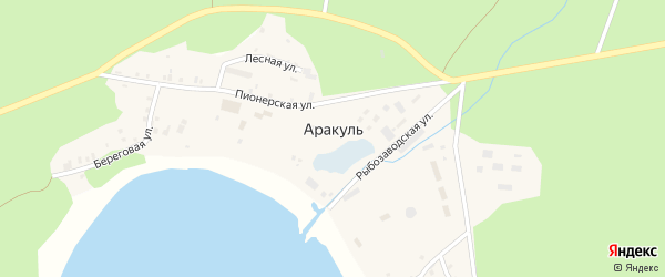 Набережная улица на карте поселка Аракуль с номерами домов