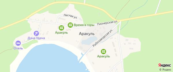 Береговая улица на карте поселка Аракуль с номерами домов
