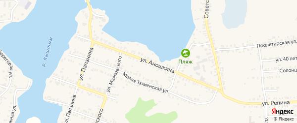 Улица Михаила Аношкина на карте Кыштыма с номерами домов