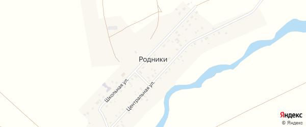 Школьная улица на карте поселка Родники с номерами домов