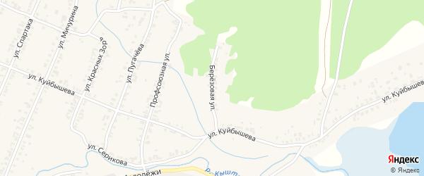 Березовая улица на карте Кыштыма с номерами домов