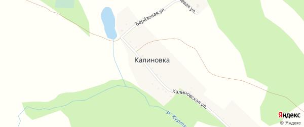 Березовая улица на карте деревни Калиновки с номерами домов