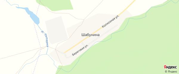 Карта деревни Шабуниной в Челябинской области с улицами и номерами домов