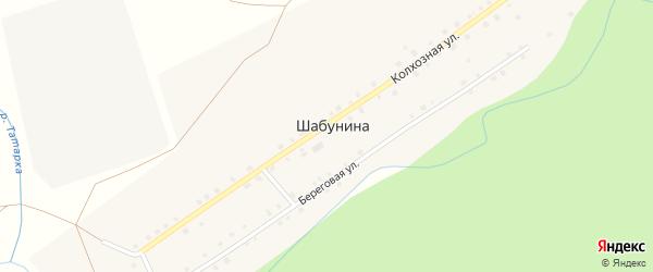 Береговая улица на карте деревни Шабуниной с номерами домов