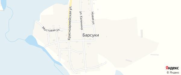 Красноармейская улица на карте деревни Барсуки с номерами домов