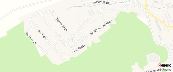 Улица 40 лет Октября на карте поселка Вишневогорска с номерами домов