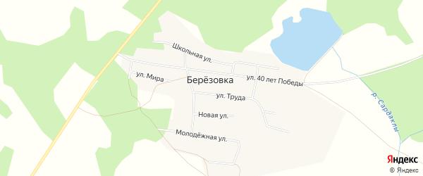 Карта деревни Березовки в Челябинской области с улицами и номерами домов