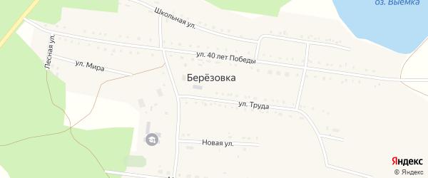 Школьная улица на карте деревни Березовки с номерами домов