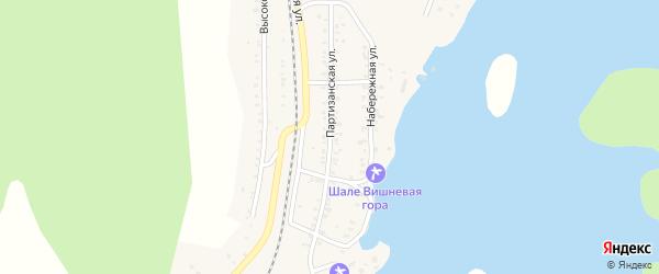 Партизанская улица на карте поселка Вишневогорска с номерами домов