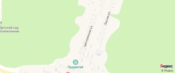 Центральная улица на карте села Демарино (центральной усадьба) с номерами домов