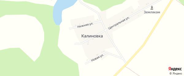Центральная улица на карте деревни Калиновки с номерами домов