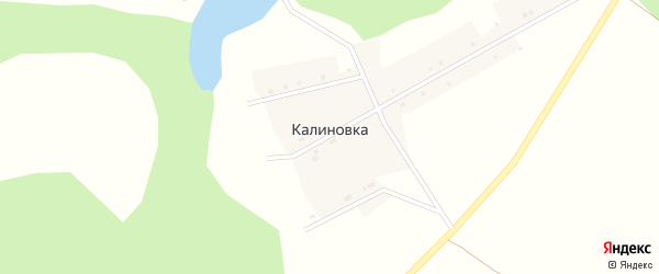 Новая улица на карте деревни Калиновки с номерами домов