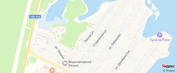 Лесная улица на карте Пригородного поселка с номерами домов