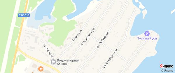 Стадионная улица на карте Касли с номерами домов