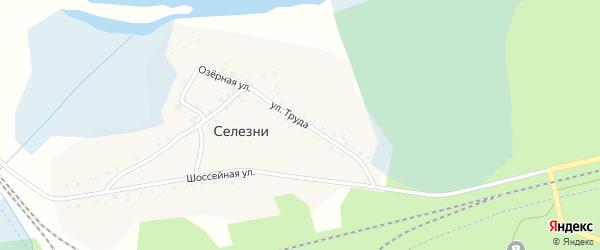 Шоссейная улица на карте деревни Селезни с номерами домов