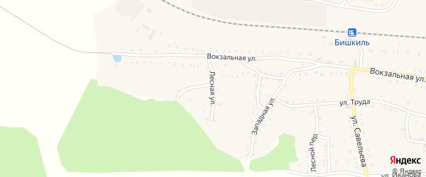 Лесная улица на карте поселка Бишкиля с номерами домов