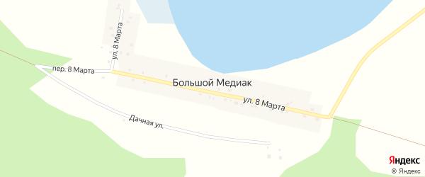 Переулок 8 Марта на карте деревни Большого Медиака с номерами домов