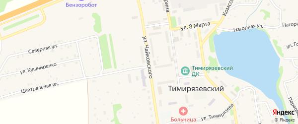 Улица Чайковского на карте Тимирязевского поселка с номерами домов