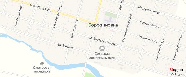 Улица Братьев Соловых на карте села Бородиновки с номерами домов