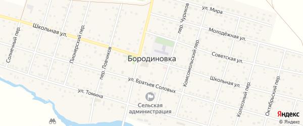 Колхозный переулок на карте села Бородиновки с номерами домов