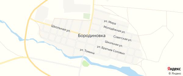 Карта села Бородиновки в Челябинской области с улицами и номерами домов
