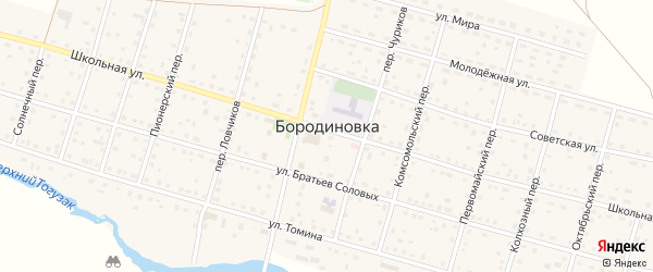 Октябрьский переулок на карте села Бородиновки с номерами домов
