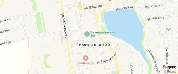 Улица Мичурина на карте Тимирязевского поселка с номерами домов