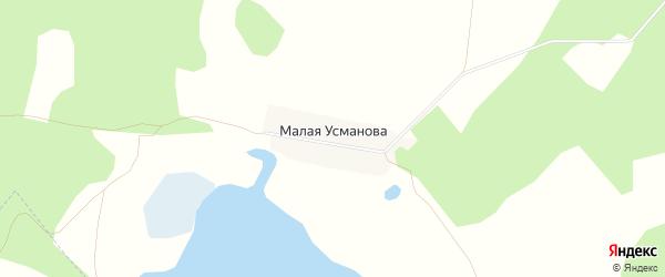 Карта деревни Малая Усманова в Челябинской области с улицами и номерами домов
