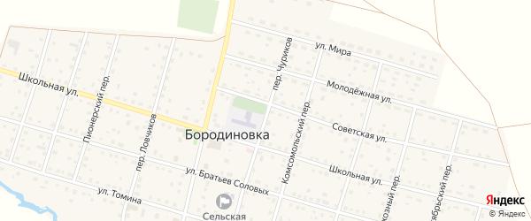 Первомайский переулок на карте села Бородиновки с номерами домов