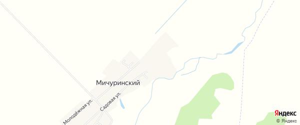 Карта Мичуринского поселка в Челябинской области с улицами и номерами домов