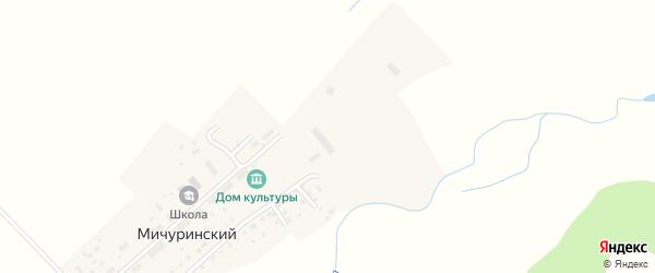 Дорожная улица на карте Мичуринского поселка с номерами домов