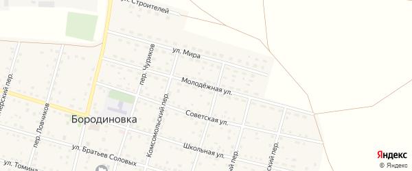 Молодежная улица на карте села Бородиновки с номерами домов