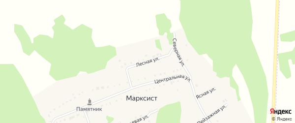 Лесная улица на карте деревни Марксиста с номерами домов