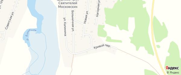 Кривой переулок на карте села Медведево с номерами домов
