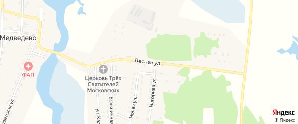 Лесная улица на карте села Медведево с номерами домов