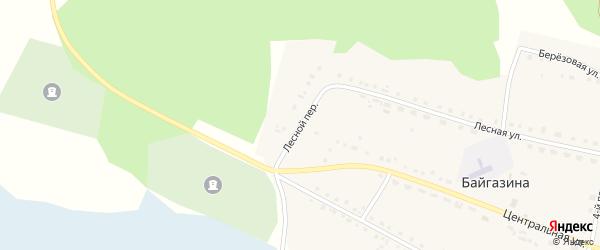 Лесной переулок на карте деревни Байгазина с номерами домов