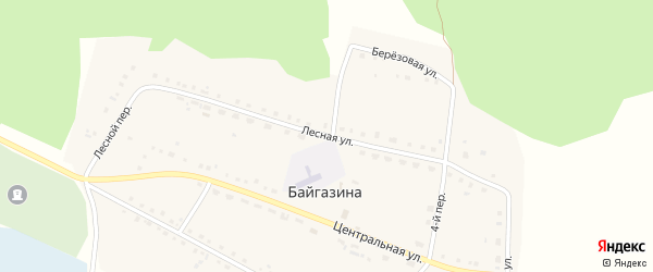 Лесная улица на карте деревни Байгазина с номерами домов